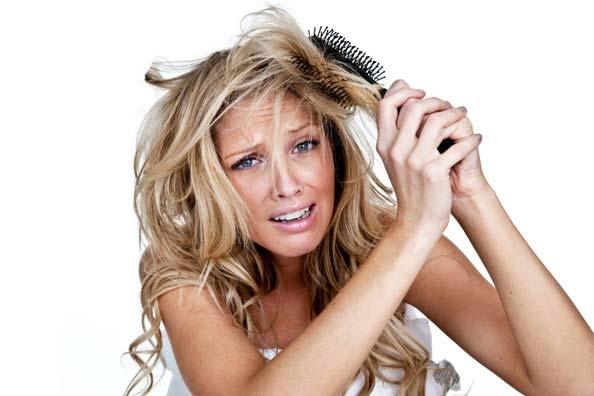 ¿Que shampoo para la perdida de cabello es mejor? Descubrilo aqui
