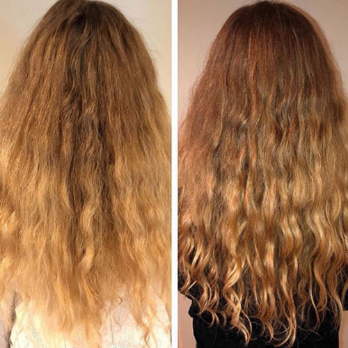 shampoo for dry and split ends hair