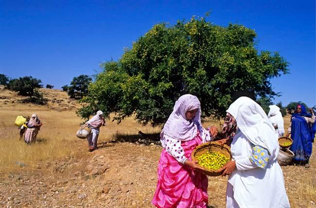mujeres produciendo argan