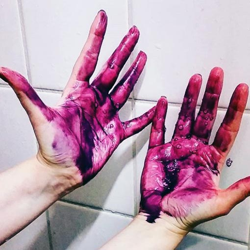 hands stained purple