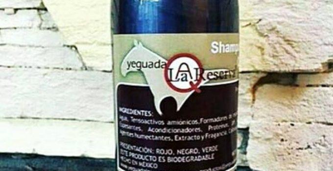 ¿Funciona Realmente el Shampoo Yeguada la Reserva  Testimonios 4a1023331f31